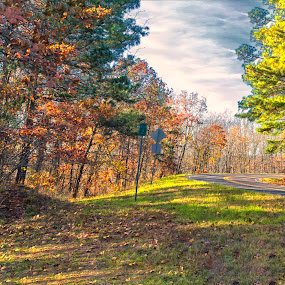 Panoramic of Pine Mountain by Thomas Vasas - Landscapes Mountains & Hills ( scenics, panoramics, mountain roads, travel, landscapes )