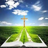 The Bible in Dutch (De Bijbel)