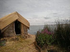 Photo: ウロス島 葦でつくられた島 ふかふかして寝転ぶと気持ちがいい