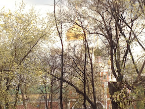 Photo: No Spring Blossoms in Moscow yet