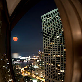 Voyeur's View by John Harrison - City,  Street & Park  Vistas ( navy pier, jnnhphoto, full moon, chicago )