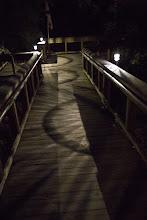 Photo: gentle lighting