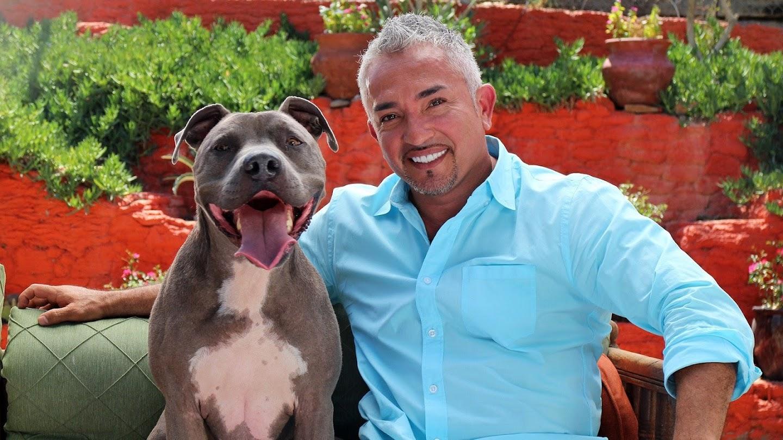 Dog Whisperer With Cesar Millan: Family Edition