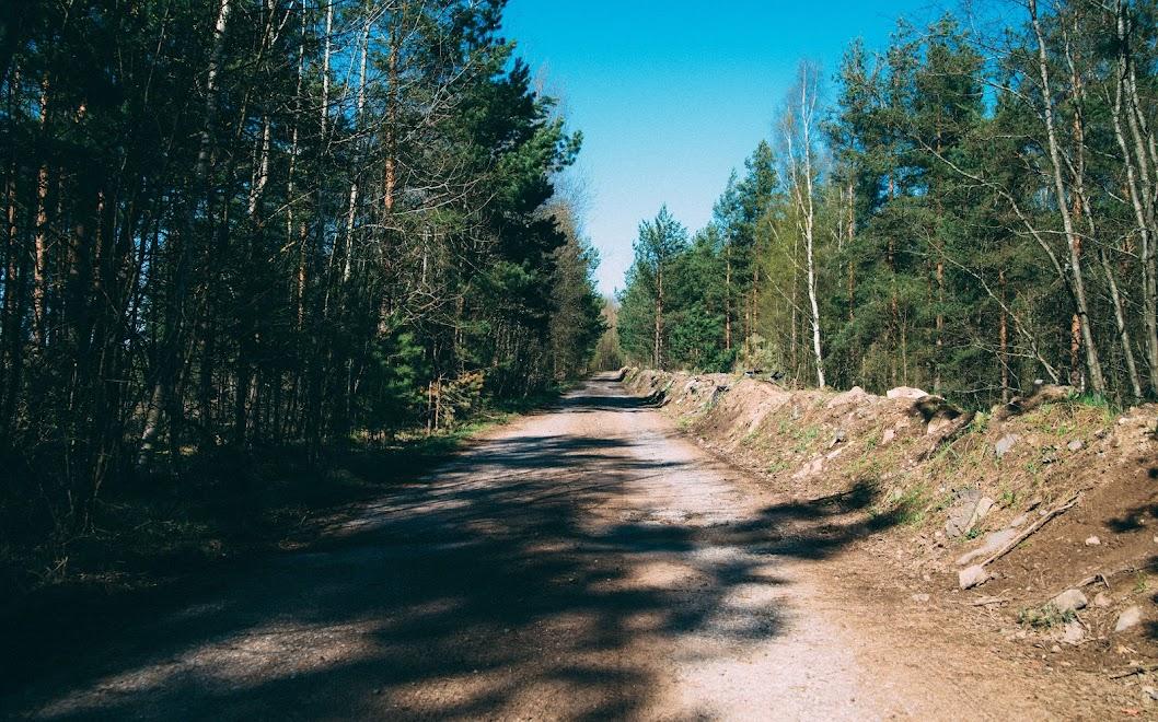 Полигонная дорога