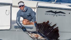 Striped Marlin Fishing in Cabo San Lucas with CC Sabathia thumbnail