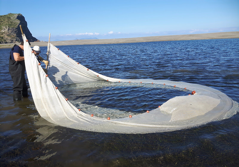 Chi scappa non si salverà....non c'è ossigeno nel lago di Gianluk