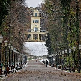 winter in Maksimir 1 by Dunja Kolar - City,  Street & Park  City Parks ( maksimir, croatia, zagreb, winter in maksimir )