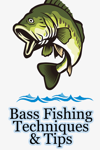 Bass Fishing Techniques & Tips & bass fishing lure 2.2 screenshots 2