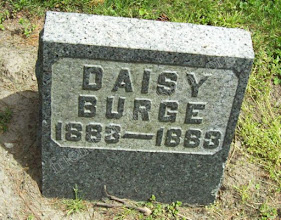 Photo: Burge, Daisy