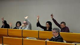 Alarcón, Carvajal, Godoy, Suero y Castillo votando en una sesión plenaria.