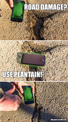 Magic plantain