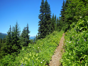 Photo: The well-trodden trail traverses many meadows