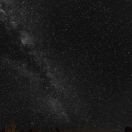 Beneath The Milky Way by Geoffrey Wols - Buildings & Architecture Decaying & Abandoned ( shed, water tank, cold, grass, stars, night, milky way,  )
