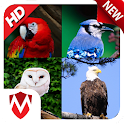 60 Bird Sounds & Ringtones icon