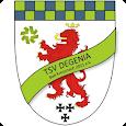 TSV degenia Bad Kreuznach icon