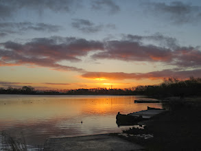 Photo: Priorslee Lake Another day: another sunrise over the lake. (Ed Wilson)