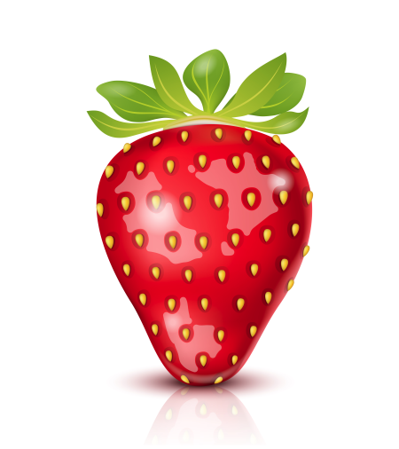 Vector Illustration Strawberry isolated on white