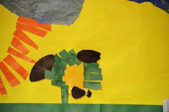 Photo: Taylor McKeton - 2nd Grade North Avoldale Montessori Cincinnati, Ohio, U.S.A.