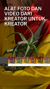 Download Vsco Mod Apk 208 Full Pack Unlocked All Filters For Android New 2021