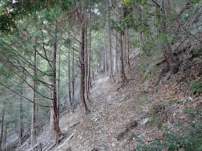 峠への水平道