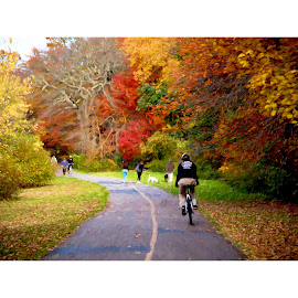 Bike Ride by Wagner Santiago - Digital Art Places ( fall colors, nature, dogs, people, park, bike )
