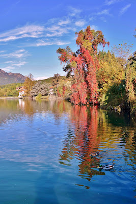 Autunno sul lago di DiegoCattel