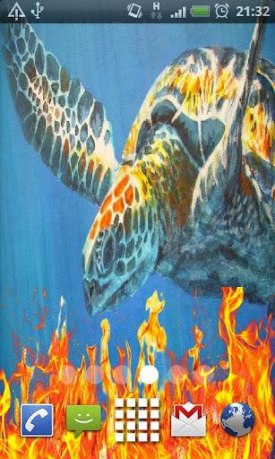 Tortoise Live Wallpaper