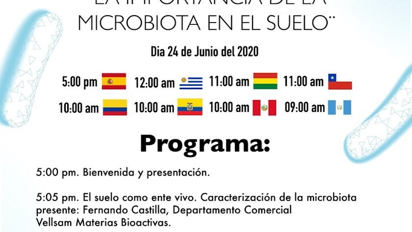 Cartel del webinar internacional.