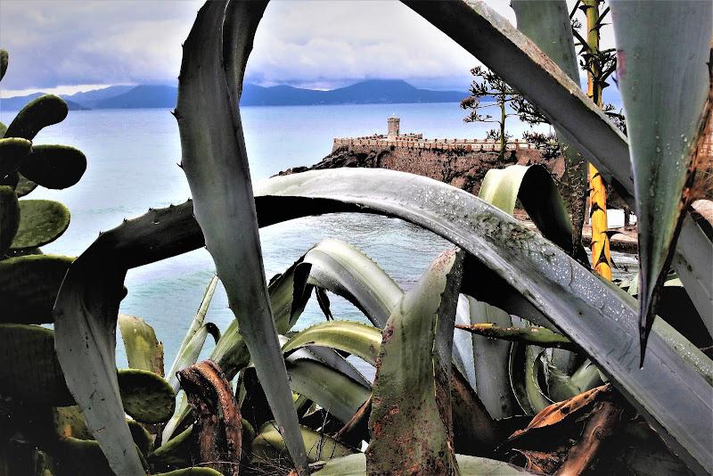 una splendida terrazza sul mare di luciano55