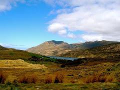 Visiter Montagnes de Dublin : marche et course d'orientation