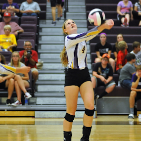 Volleyball 2 by Tom Vogt - Sports & Fitness Other Sports ( ball, girl, hit, volleyball, gym,  )