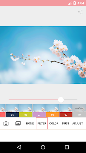 AnalogPink - Photo Filters for PC