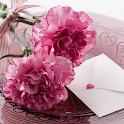 Carnation for Mum - Wallpapers icon