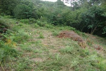 terrain à Sainte-Cécile-d'Andorge (30)