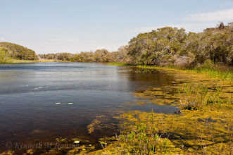 Photo: Jones Lake, Aransus NWR