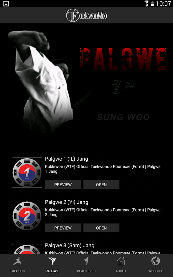 Taekwondo Forms (Poomsae)- screenshot