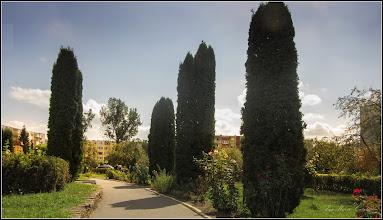 Photo: Turda - Calea Victoriei, Nr.31 - Parcul Bisericii Ortodoxe - 2019.09.04