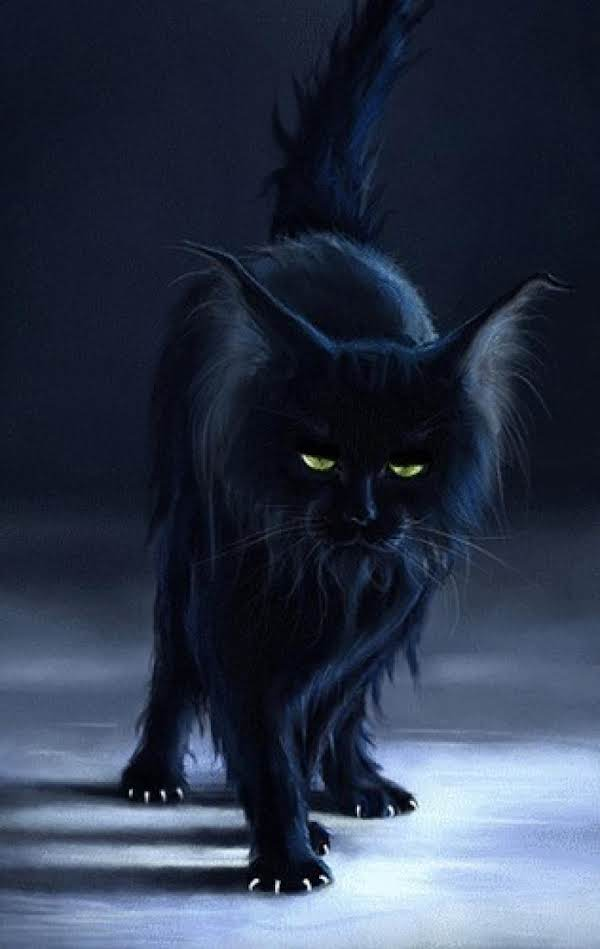 Black Cats As Witches' Familiars Recipe
