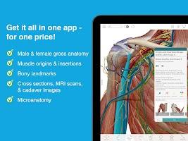 Human Anatomy Atlas 2019: Complete 3D Human Body