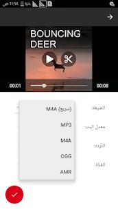 تحويل الفيديو إلى صوت (MP3, AAC, WMA, OPUS, OGG) 3
