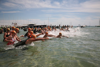 Photo: Sorrento SLSC Bay Swim 2016