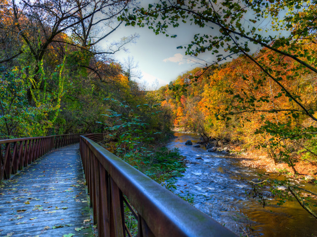 Wissahickon Valley Park - Image: https://fow.org/