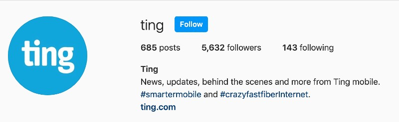 The Ting Instagram header showing 685 posts, 5,632 follower and 143 following.