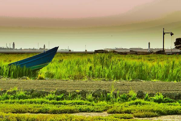 ..., ma ci vado in barca! di S. Fasan