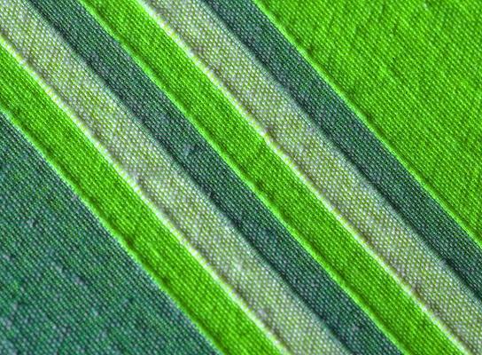 linee green di dady2