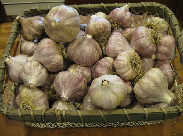 2013 Garlic Harvest Recipe