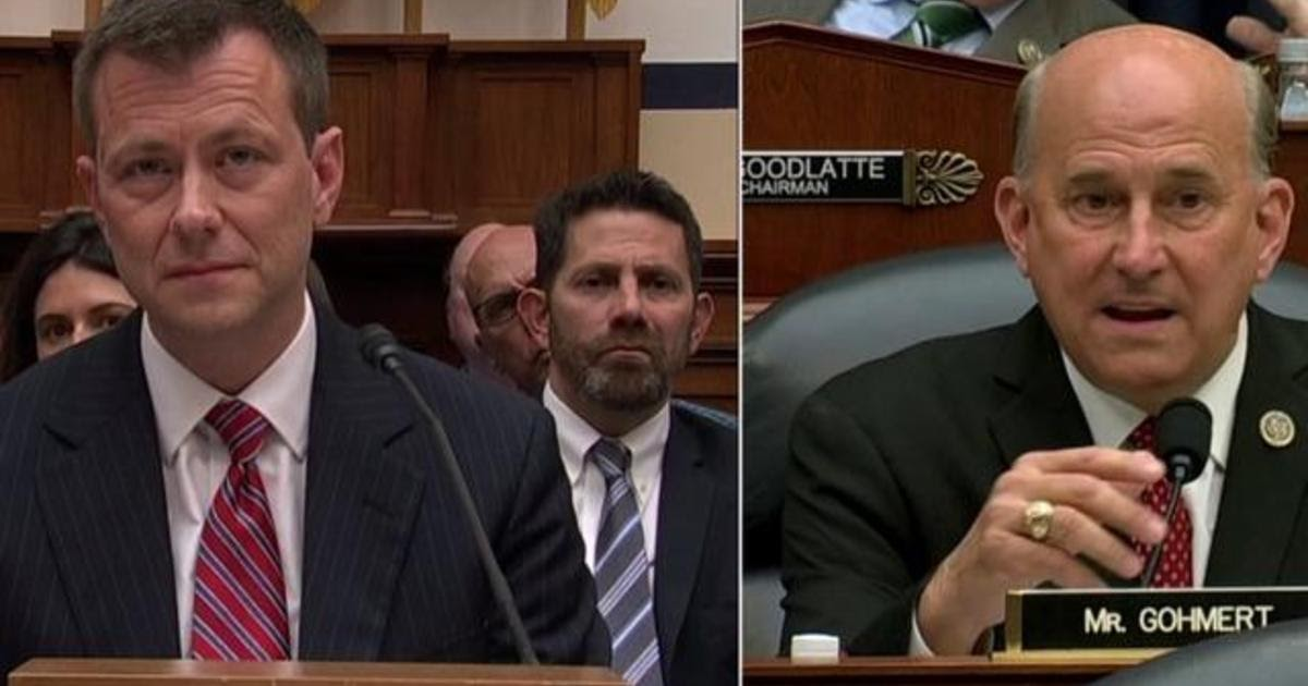 Democrat says disgraced FBI agent Strzok deserves a 'Purple Heart'