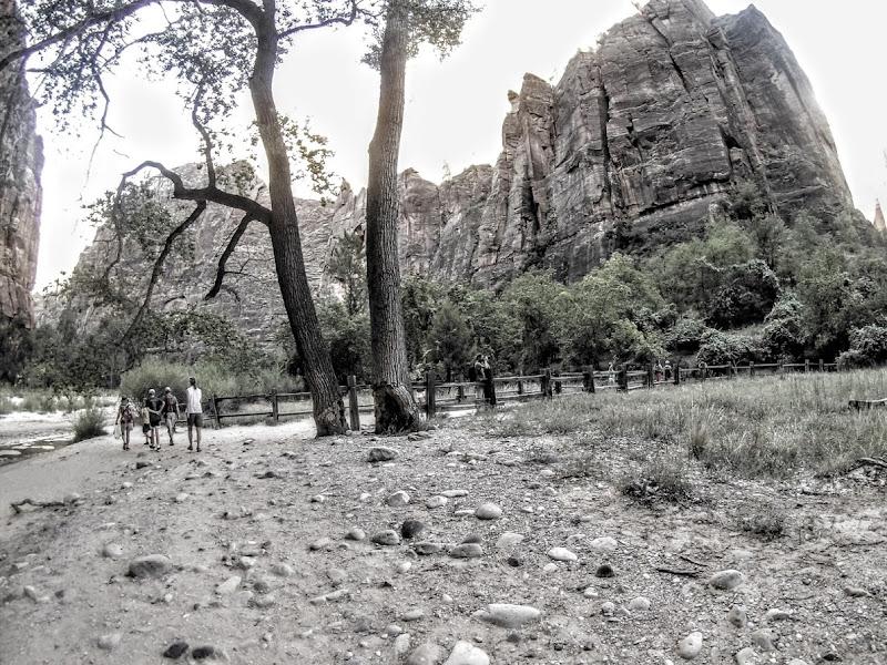 Sentieri tra i Canion Zion di MonAnd ph