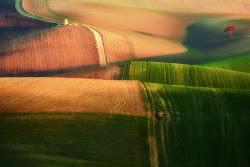 Wheat: uploading... di prometeo
