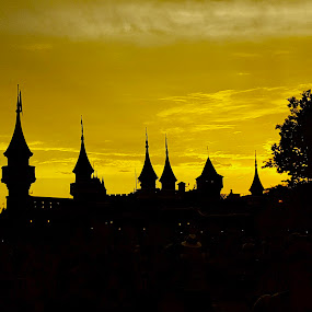 Silhouette  by Riddhima Chandra - Buildings & Architecture Other Exteriors ( castle, disney, silhouette, orlando, travel,  )